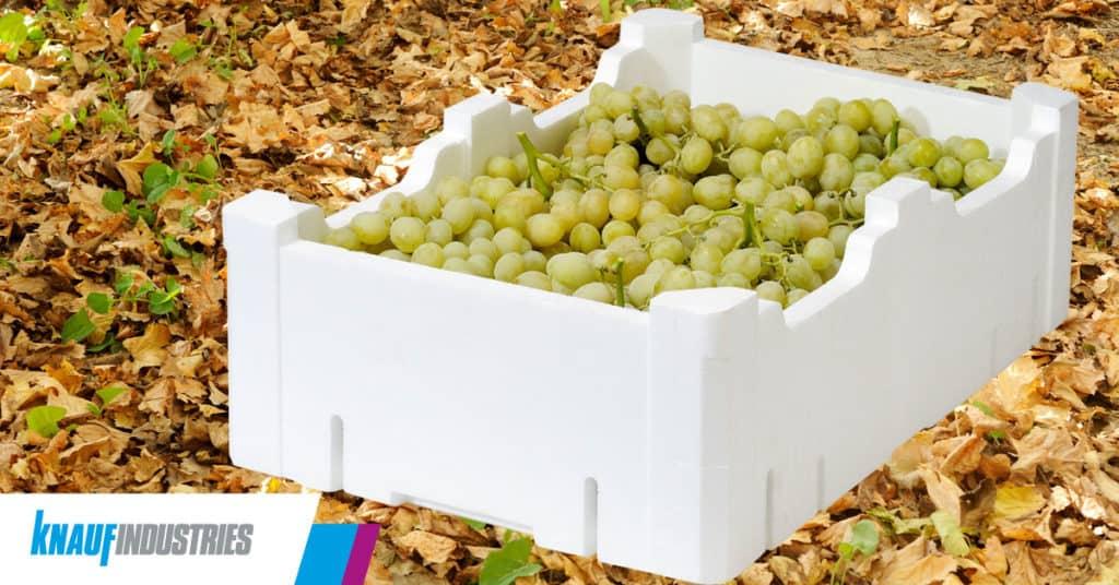 Alargar la vida de la fruta con envases EPS, la propuesta de Knauf Industries en Postcosecha