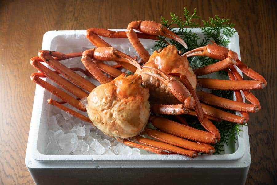 crustaceo-packaging